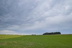 sebastienleunen_tiersa (Galerie photo des paysages du Parc naturel) Tags: braives hesbaye pnbm sébastienleunen tiersa parcnatureldesvalléesdelaburdinaleetdelamehaigne septembre sitenaturel