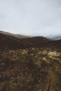 wilderness sunrise