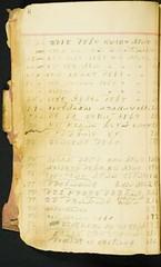Medicine formulas in Cherokee