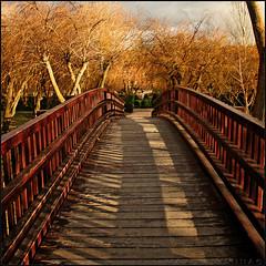 Sombras del Puente (m@tr) Tags: sombrasdelpuente imagenesdeespaa espaaenimagenes pueblosdeespaa elburgodeosma soria castillaylen espaa canoneos400ddigital canon canonefs1855mmf3556is mtr marcovianna