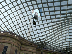 Coming Through the Roof (outtacontext) Tags: architecture lattice kogod smithsonianamericanartmuseum kogodcourtyard