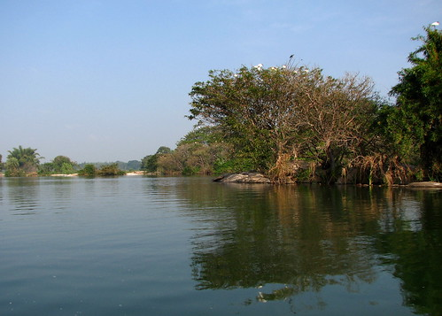 Ranganthittu Landscape