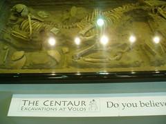 centaur?