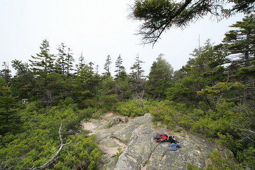 On top of Schoodic Head