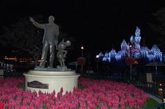 Disneyland December II (43)