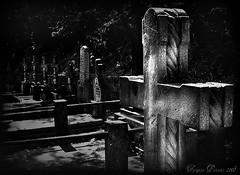 keep your mind in hell, but despere not (Tanjica Perovic Photography) Tags: blackandwhite bw graveyard photography fotograf photographer cross orthodox  srpski fotografija    tanjicaperovicphotography