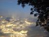 Árvore / Núvens (Rafinha Shinta1) Tags: verde planta praia café animal água natureza flor bonito paisagem céu vermelho fruta amarelo peixe ave borboleta cachorro quarto Árvore prédio sapo oriental decoração lagarto siri coqueiro papagaio arara prata aranha canário grão carangueijo núvens gafanhoto gaiola besouro bichinho enguia