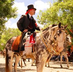 De calzoncillo y chirip (Eduardo Amorim) Tags: horses horse southamerica argentina criollo caballo cheval caballos cavalos
