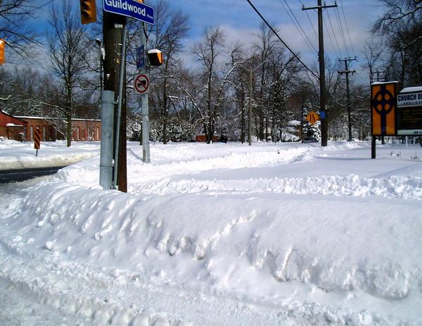 Guildwood Village