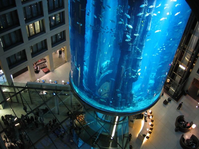 Didžiausias pasaulyje akvariumas