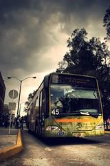 Puma Bus. (Pablo Leautaud.) Tags: bus mxico canon mexico eos cu unam puma hdr distritofederal 30d artphoto ciudaduniversitaria pumita pleautaud
