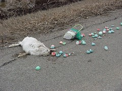 EasterBunnyDead