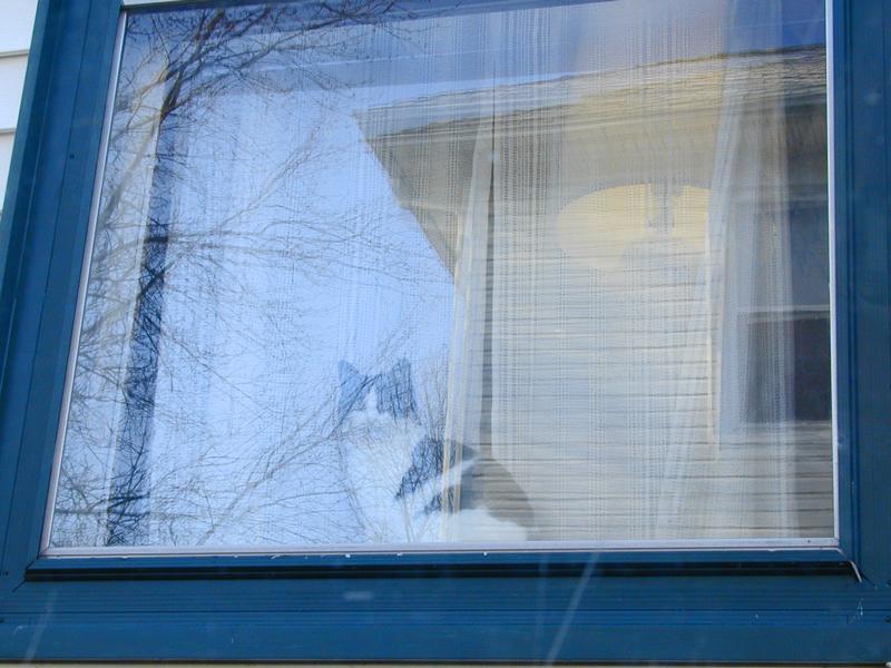 Cat's Eye Window