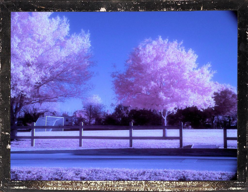IMAGE: http://farm3.static.flickr.com/2231/2399072469_411dd2c239_b.jpg