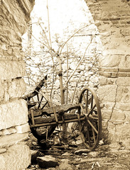 Old carriage (Vasilis Manthos) Tags: carriage greece tradition kastoria  vitsi     polykerasos vasilesmanthos