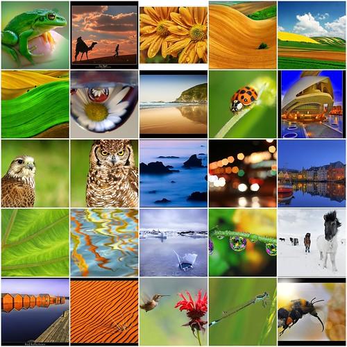 Mi mosaico de favoritos / My favourites mosaic (22/05/2008)