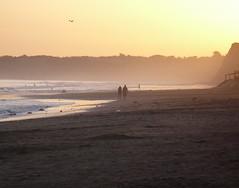 Caminemos a orillas del mar (juannypg) Tags: sunset sea sun sol beach argentina atardecer mar pareja playa atlántico mardelplata océano acantilados playaserena anawesomeshot diamondclassphotographer flickrdiamond goldstaraward worldwidelandscapes