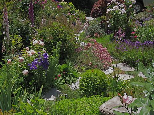 Carmel cottage garden