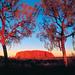 Uluru - Zachód słońca