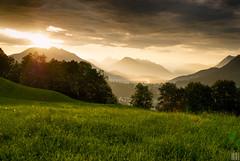 golden morning light (gregor H) Tags: nature backlight sunrise landscape austria sterreich bravo chapeau liechtenstein alp gettyimages spectacle vorarlberg schellenberg morningspirit bratanesque goldenmorninglight