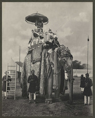 'Lord and Lady Curzon on an Elephant' (National Media Museum) Tags: elephant adorno riding elefante 1890s 1895 pompa curzon paquiderme nationalmediamuseum lordcurzon ladycurzon