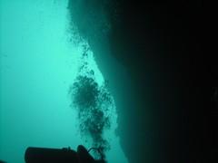 PICT0027 (JoseQ) Tags: blue mar hole great tiburones buceo caribe submarinismo tiburón