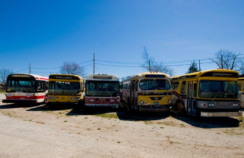 Classic TTC Buses