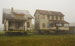 Lovely houses in the fog (Black.Doll) Tags: florida titusville tinroof crackerhouse brevardcounty brevardheritagepark
