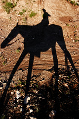 Tall Boy (Bhlubarber) Tags: shadow red horse mountain selfportrait abstract southamerica argentina animal silhouette ride graphic earth central sierra trail sierras horseback lacumbre conosur davidniddrie lpshadows2