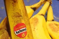 Banana (Trampelman) Tags: nikon bananas micro d300 afmicronikkor105mm trampelman cmwdyellow