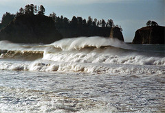 Perfect wave at Rialto Beach (donmarcyp) Tags: waves beaches rialto