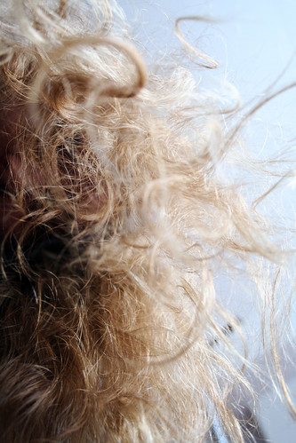 Frizzy hair by hoosadork, on Flickr