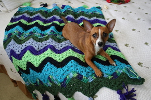 April 08 Crochet - 1.jpg
