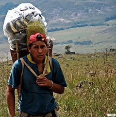For few dollars - Monte Roraima Trekking - Gran Sabana - Venezuela (TLMELO) Tags: portrait people india trekking pessoa hiking retrato venezuela young garoto hike climbing backpacking backpack tiago worker monte canaima porter menino thiago justdoit trabalho jovem mountaineer porters trilha roraima indgena trabalhador mountaineers povo tepui ndio montanhista impossibleisnothing keepwalking carregador supershot carregadores theperfectphotographer tlmelo dotheimpossible