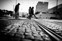 La dolce vita 7/8 (tomabenz) Tags: sony a7rm2 contrast dolce vita monochrome lisboa lisbonne noir et blanc bw bnw black white street photography noiretblanc lisbon blackandwhite dolcevita sonya7rm2 streetphotography