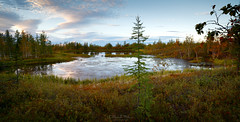 panorama of northern lake (czdistagon.com) Tags: panorama landscape forest tundra lake sunset sky clouds trees distagont2821