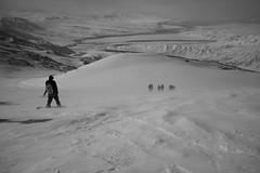 windy... (maekke) Tags: kyrgyzstan snowboard snow snowboarding humanelement bw noiretblanc fujifilm x100t 2017 35mm mountain mountains nature tourist touring travelling