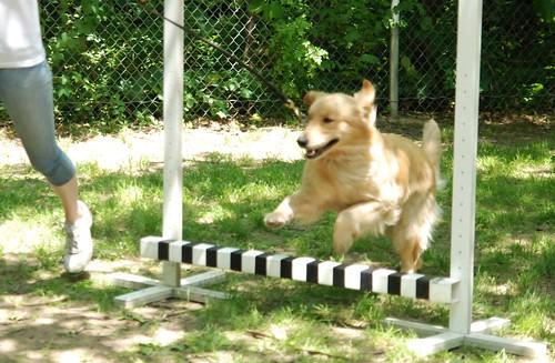 Sandy Jump