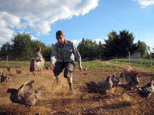 365/107 Airborne Hen