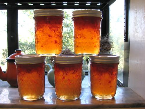 Habenero Jelly 2