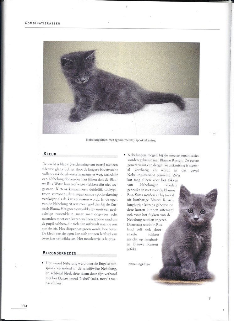 publications - Cat encyclopedia - the Netherlands -first pri 1617400037_3adc30a242_b