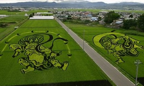 Strange Plant Art