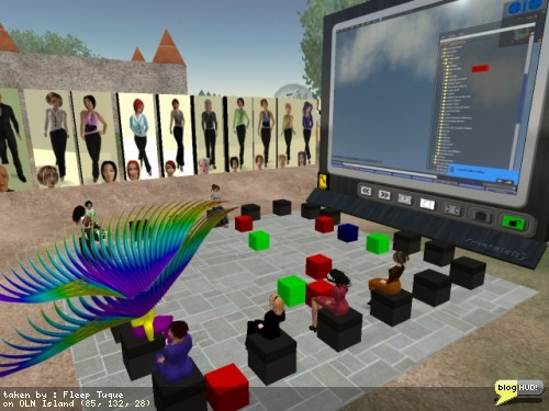 OLN Second Life Newbie Q&A Session