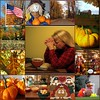 Happy Thanksgiving to Everyone! by Through Joanne's eye