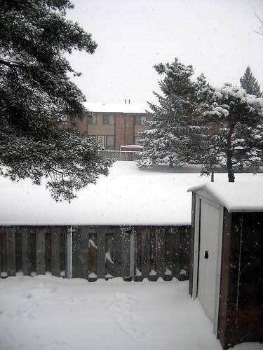 First snowfall!