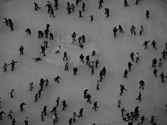 hormiguero / mrowisko (Odaa) Tags: skating poland polska icerink polen warsaw polonia warszawa pkin varsovie varsovia warschau pologne patinaje patinando  hormiguero polsko paackultury  varsavia puola  lenkija odara lengyelorszg lodowisko cotcmostfavorited patinar ywy varsj  poljska      mrowisko varsavja varuva       odaa lehistan