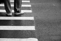 Walk Don't Walk