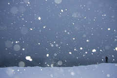 Mystical Snow Flickrman (Elsa Prinsessa) Tags: blue snow man nature silhouette night dark landscape snowflakes iceland purple reykjavik explore snowing elsa mystique 50faves 10faves 25faves abigfave anawesomeshot aplusphoto diamondclassphotographer elsaprinsessa flickrsfinest100faves elsabjrgmagnsdttir