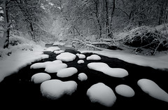 New Snow, Taylor Creek (Peter Bowers) Tags: trees winter blackandwhite bw white snow toronto ontario canada cold ice nature water creek landscape photo nikon frost shapes sigma frosty snowfall manfrotto sigma1020mm taylorcreek peterbowers nikond200 peterbowersphotography capturenx pwassignments assignment22