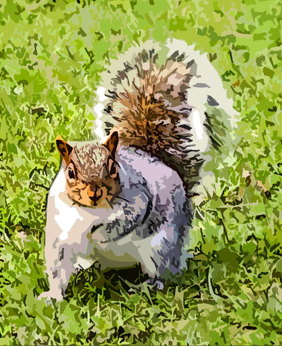 The Tonbridge Squirrel